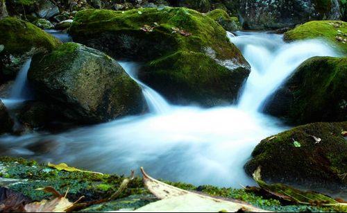 陕西. 眉县--太白山国家森林公园 - 海阔山遥 - .
